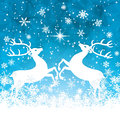 Reindeers Royalty Free Stock Image