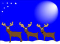 Reindeers in snow Royalty Free Stock Photography