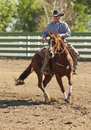 Reining horse rider rancharrah cow classic nrcha nrc cha aqha nqha approved may june Stock Image