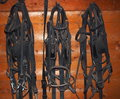 Reins and horse collars hanging on nail in barn Stock Photography