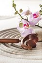 Rejuvenating massage at spa beauty concept with sand and flowers Royalty Free Stock Image
