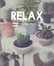Relaxation Relax Chill Out Peace Resting Serenity Concept Royalty Free Stock Photo