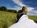 Relaxation sur le pré Image stock