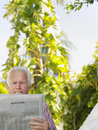 Relaxed mature man reading newspaper against plants outdoors Royalty Free Stock Photo