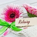 Relaxing with flowers coupon pink Royalty Free Stock Photos