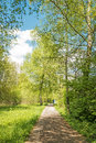 Relaxing in light green nature recreation bright spring chiemgau germany Stock Image