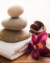 Relaxing massage bath Stock Photography