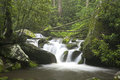 Relaxing scenic in the Great Smoky Mountains USA Royalty Free Stock Photo