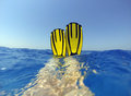 Relaxing in the water diver swimmer legs with yellow fins clear blue tropical sea red sea egypt Stock Photos