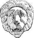 Relief of a lion head vector drawing the antique architectural detail in form Royalty Free Stock Photos