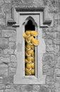Religious riches Royalty Free Stock Photo