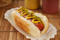 Relish dog a hot with and mustard Royalty Free Stock Photography