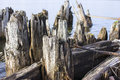 Remains of the old pier. Royalty Free Stock Photo