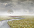 Remembering beautiful landscape with a tree and a path with clouds and fog Royalty Free Stock Photography