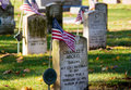 Remembering our soldiers veterans from early wars are still remembered as american flags are placed by them on memorial day Royalty Free Stock Photos