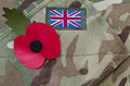 Remembrance day Royalty Free Stock Photos