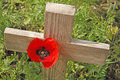 Remembrance day a poppy and a wooden cross Royalty Free Stock Photo