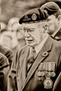 Remembrance Day War Vet Stock Photography