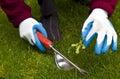 Remoção de ervas daninhas da mão Foto de Stock