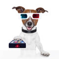 Remote control 3d glasses tv movie dog Royalty Free Stock Photo