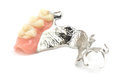 Removable partial denture close up of replacement teeth on white background Royalty Free Stock Photography