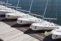 Rental sailboats small centerboard line the pier at a yacht club on the water Stock Image