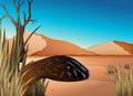 A reptile at the desert illustration of Royalty Free Stock Images