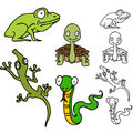 Reptile and Frog Set Royalty Free Stock Photo