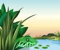 A reptile near the pond illustration of Stock Photography