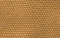 Reptile skin large illustration Royalty Free Stock Images