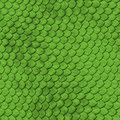 REPTILE SKIN - SEAMLESS Royalty Free Stock Photo