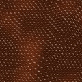 Reptile texture - seamless Royalty Free Stock Photo