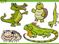 Reptiles and amphibians cartoon set Royalty Free Stock Photo