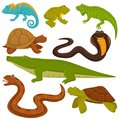 Reptiles and reptilian animals turtle, crocodile or chameleon and lizard snake flat vector icons