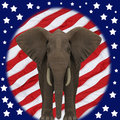 Republican Elephant. Royalty Free Stock Photo