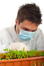 Researcher man examine new plants Royalty Free Stock Images