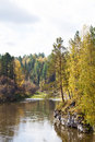 Reserve deer streams nature river forest ural stones Stock Photo
