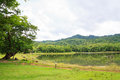 Reservoir at Jedkod Pongkonsao Natural Study and Ecotourism Cent Royalty Free Stock Photo
