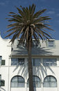 Residenrtial building with palm tree Royalty Free Stock Images
