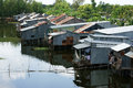 Residential area on river with corrugated iron houses Royalty Free Stock Photo