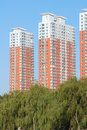Residential buildings the high rise are behind trees Royalty Free Stock Image