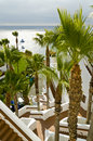 Resort palm trees and stairs Stock Photography