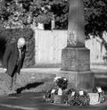 Respect at a cenotaph veteran pays his respects on armistice day Royalty Free Stock Image