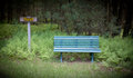 Rest bench a sign on a trail next to a green in the woods Stock Images