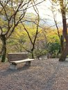 Rest in the park japan Royalty Free Stock Photo