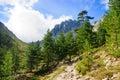 Restonica gorge the gorges de la in corsica france Stock Images