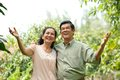 Retired romantic couple asian in the park Stock Image