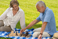 Retired senior couple playing chess in park sitting blanket grass Stock Photos