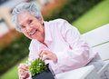 Retired woman fixing a plant outdoors enjoying gardening Stock Photos