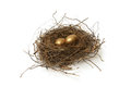 Retirement fund a couple gold nest eggs for the idea of a wealthy Royalty Free Stock Photography